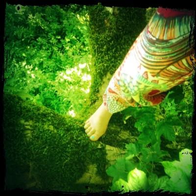 Das Foto ist bestimmt von der Vogelperspektive nach unten und zeig ein Bein in einer bunten Hose, das in der Krone eines grünen Baumes/Geästs steht - das Bild wirkt sehr saftig und Grün..